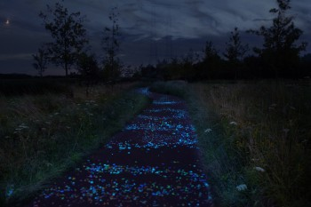 Sparkling Roosegaarde-Van Gogh Bicycle Path