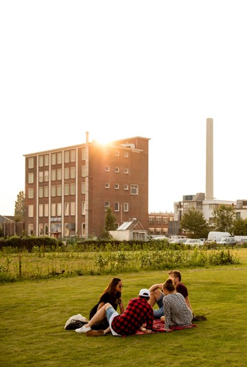 Smog Free Tower opens in Rotterdam NL